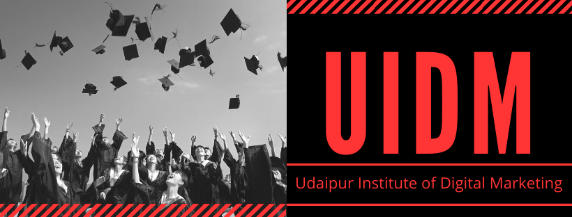Udaipur Institute of Digital Marketing